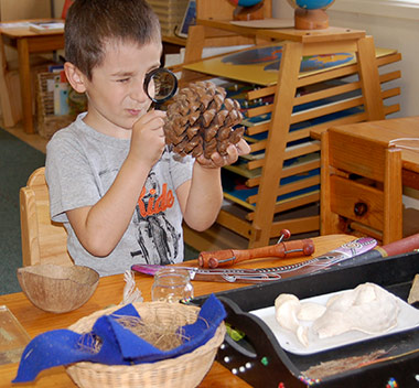 boy-magnifying-glass-pinecone